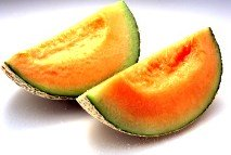 Fresh cantaloupe melon slice
